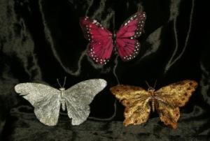 addons_butterfly