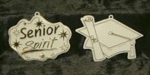 Senior Spirit, Graduation Cap